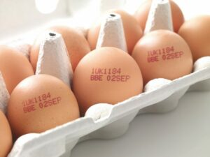 Egg Stamp - Egg Stamps